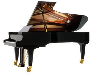 Schimmel K 256 Model